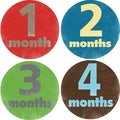 Rocket Bug Boys' Escapade Monthly Baby Bodysuit Stickers