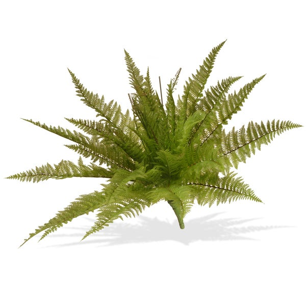 Ruffle Fern Bush Green 21-inch Ruffle Fern Bush