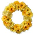 Cosmos Yellow 19-inch Wreath