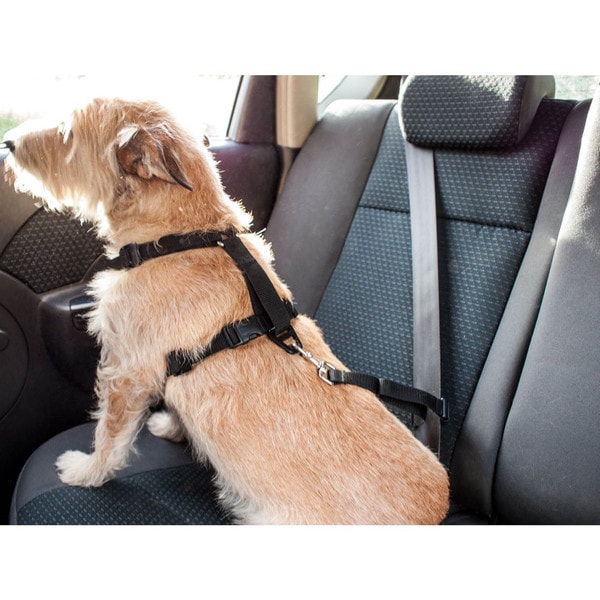 Furhaven Easy-Comfort Pet Harness with Seat Belt Attachment