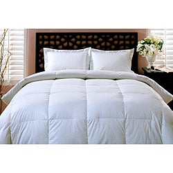 All Seasons Soft Durable 250 Thread Count Down Blend Comforter
