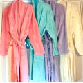 Jennifer Nicole Lee Women's Plush Spa Robe