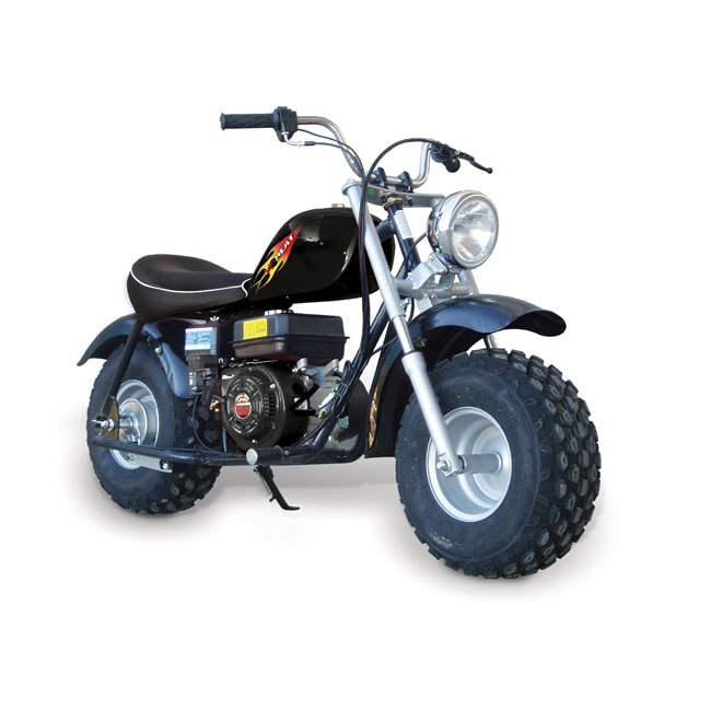 Adult Mini Bikes With Big Tires Baja Heat Mini Bike
