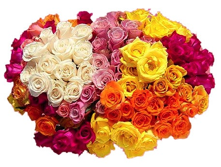 Ultimate Rose Bouquet (100 Roses)