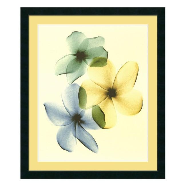 Steven N. Meyers Plumeria Framed Art Print
