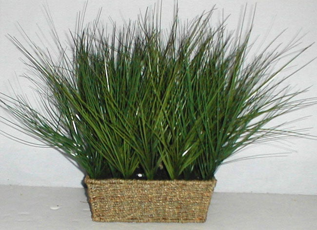 Artificial seagrass plant in woven basket 1139272 for Seagrass for landscaping