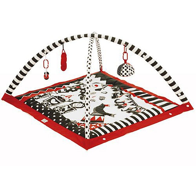Tiny Love Gymini Black White And Red Activity Gym