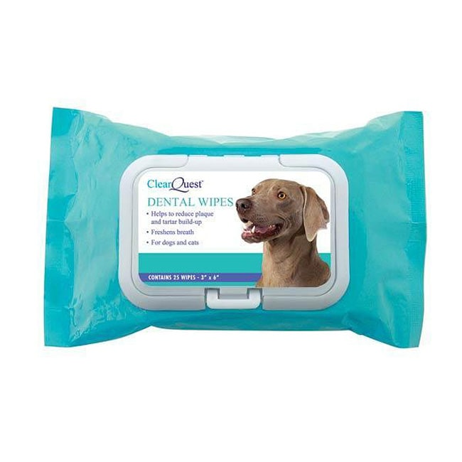 ClearQuest 100-count Dental Wipes