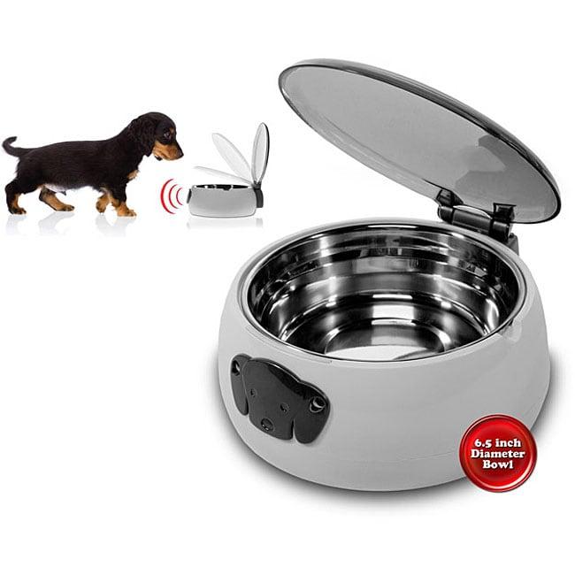 Auto Lid Pet Dish