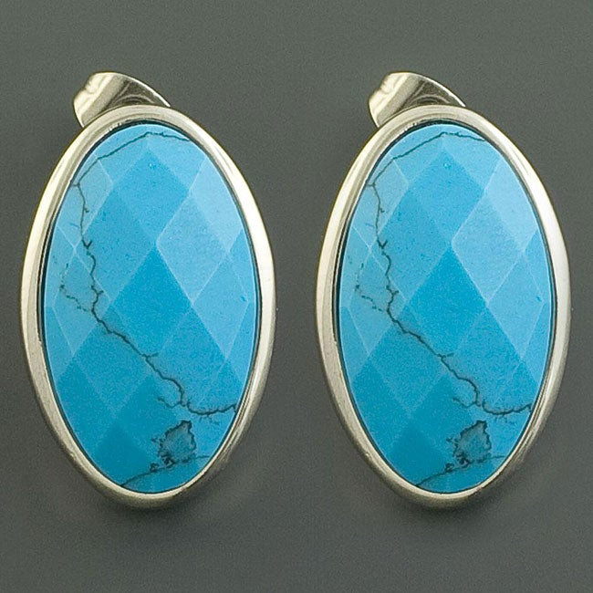 Stainless Steel Oval Turquoise Earrings (China)