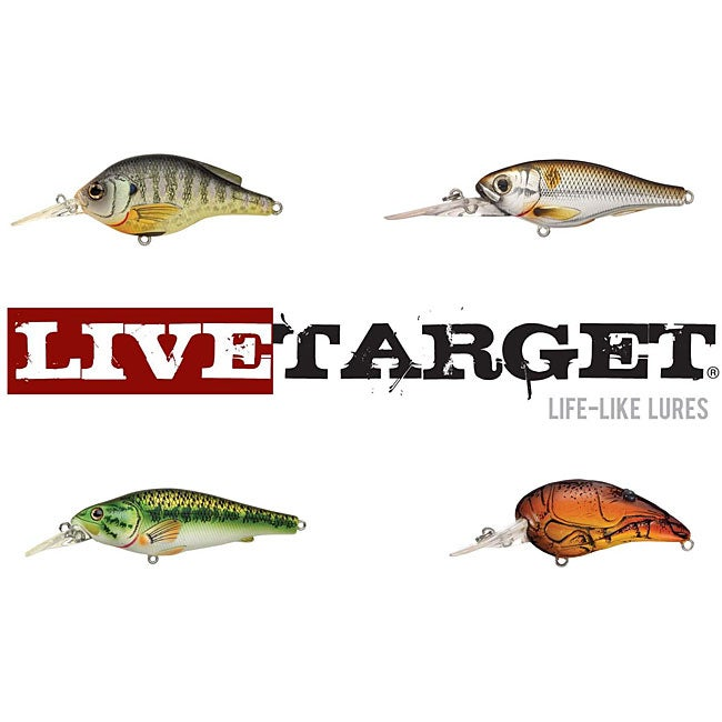 Live target bass fishing lures 12534891 for Live target fishing lures
