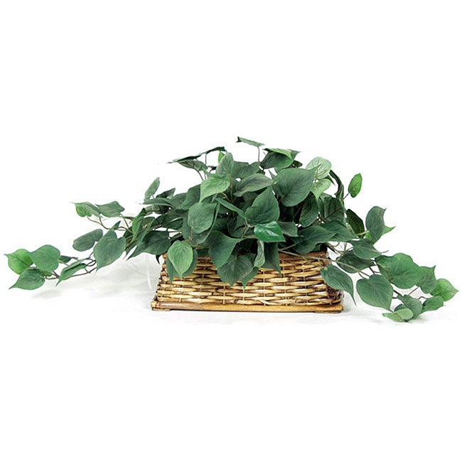 Frosted Foliage Ledge Silk Plant (Pack of 2)