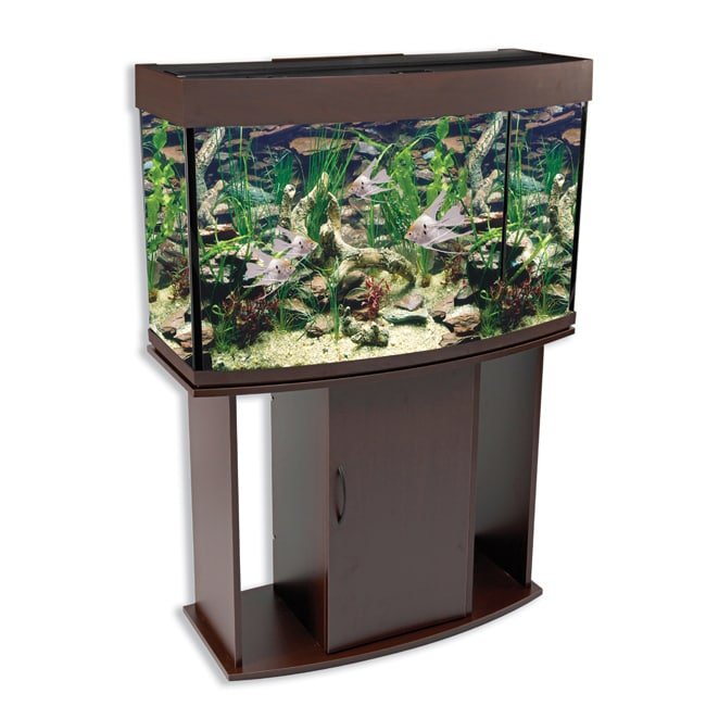 North Star Bow Front 58-gallon Aquarium and Stand