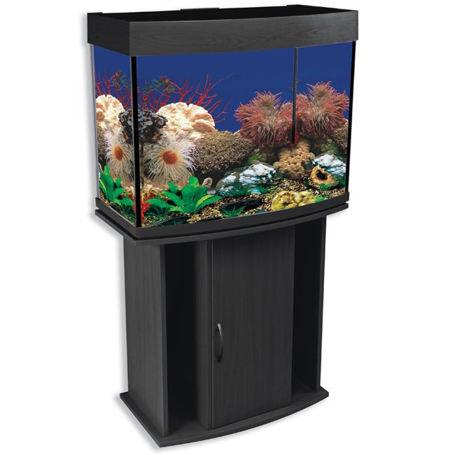 North Star 42-gallon Bow Front Aquarium and Stand ...