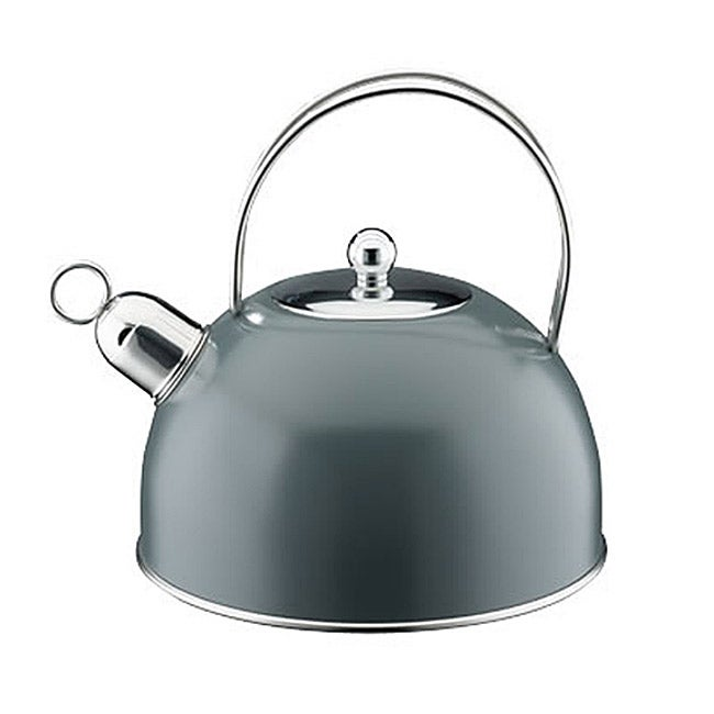 Cool Tea Kettles ~ Elo classic color stainless steel cool grey tea kettle