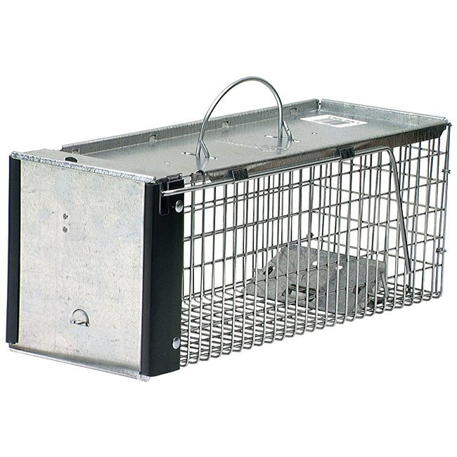Havahart Animal Traps Single Door Animal Trap