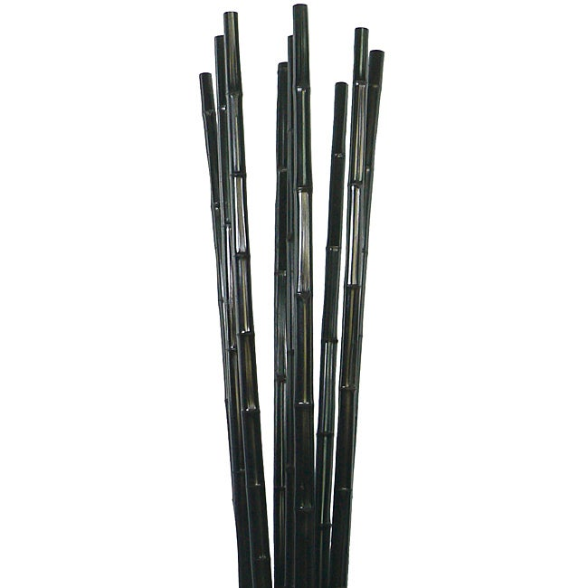 Tall Bamboo Sticks ~ Laura ashley tall black bamboo poles