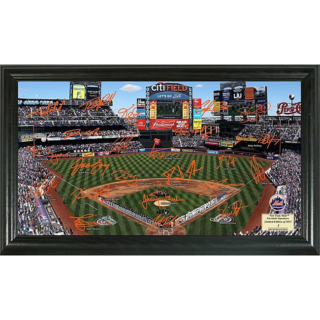 New York Mets Signature Field Frame