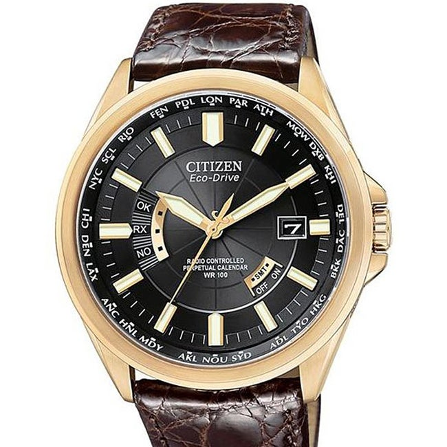 Citizen Men's Eco-Drive Leather Strap Watch