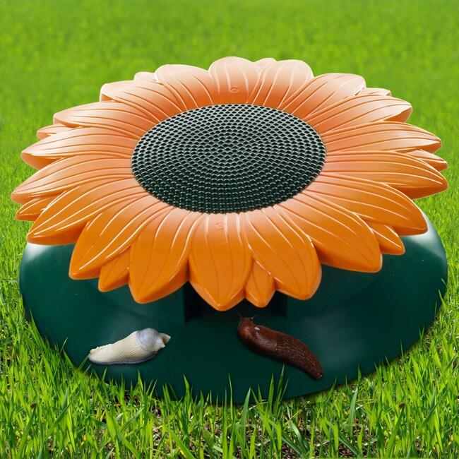 TerraTrade Sunflower Snail and Slug Killer