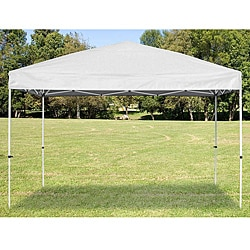 White Magnum Pro 10x10 Canopy Kit