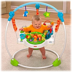 Fisher Price Precious Planet Blue Sky Jumperoo 13048584