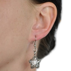 West Coast Jewelry Stainless Steel Filigree Cut-out Star Earrings