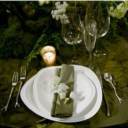 'Twilight Breaking Dawn' 10-piece Dinnerware Set