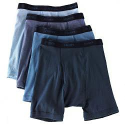 Hanes Men's Assorted Pre-Shrunk Blue Boxer Briefs (Pack of 4)