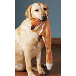 Mini Skinneeez 13-inch Two Squeaker Stuffingless Dog Toy 4-piece Set