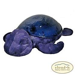 Cloud B Tranquil Turtle