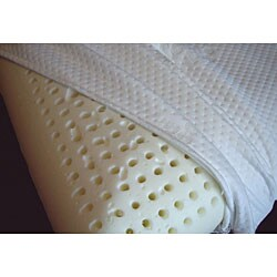 Italian Memory Foam Plush Pillow with Cool Plus Cover