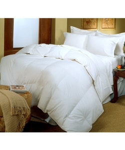 Egyptian Cotton Wool Comforter