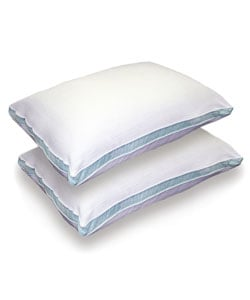 Beautyrest Micro Velour Spa Pillows (Set of 2)