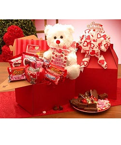Valentine's Chocolates Care Package Gift Box