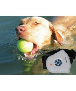 Barkstop Waterproof Collar