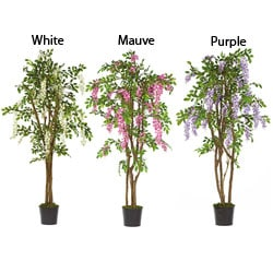 Wisteria 5-foot Silk Tree