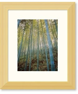 Bamboo Forest, Sagano, Japan Eco-Conscious Bamboo Framed Art Print