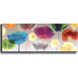 Robert Mertens 'Poppy Panorama' Canvas Art