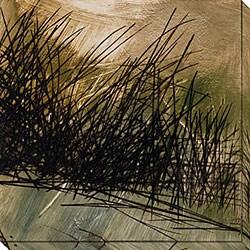 Caroline Ashton 'Nest Series I' Gallery-wrapped Art