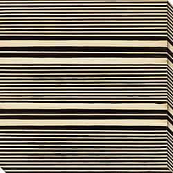 Leslie Saris 'Stripe Vision II' Oversized Canvas Art
