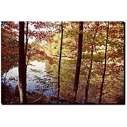 Kurt Shaffer 'A Secret Pond' Gallery-wrapped Art