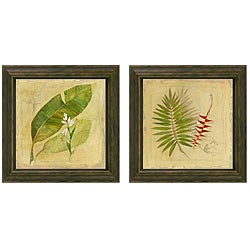 Hand-embellished 'Botanical Study' Framed Wall Art (Set of 2)