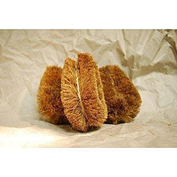 Coir Fiber 4-inch Vegetable Brush (Pack of 6)