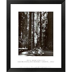 Ansel Adams 'Redwoods, Founders Grove' Framed Art