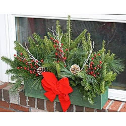 Fresh-Cut Maine Balsam Winter Window Box