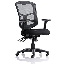 Ergo Mesh High Back Multi-Function Chair