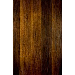 Brazilian Walnut Floors (18.99 SF)