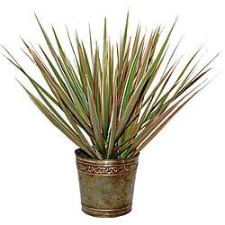 Bi color dracaena marginata live plant in marble colored planter