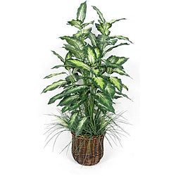Silk 4-foot Dieffenbachia Floor Plant